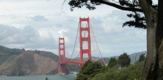 Dell updates VMWorld 2015 at San Francisco (Image credut freeimages.com/Nancy Brown