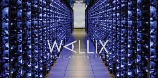 Wallix releases Cyber-Insurance survey