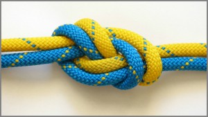 Knot Image credit Freeimages.com/marcin krawczyk