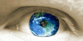 NetSuite (Image Source Freeimages.com/Gabrial Pico