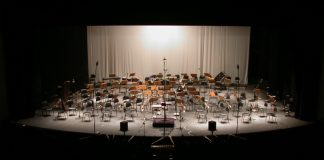 stage-for-symphony-orchestra-1528192 Image credit Freeimages.com/andre leme