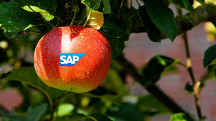Apple bids for business with SAP