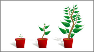 Growth (Image Credit Pixabay/OpenClipart-Vectors