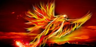 Phoenix, Pixabay/Mysticsartdesign