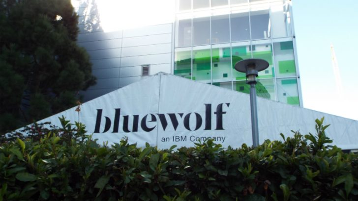 Business Leader Interview – Eric Berridge, CEO at Bluewolf