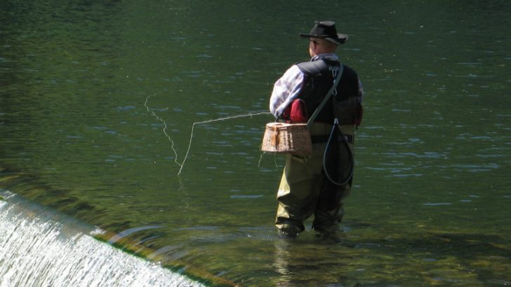 Gone Fishing - Image Source: FreeImages.com / Sascha Beck May2, 2007