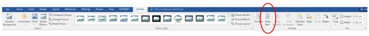 Picture Tools Format Tab