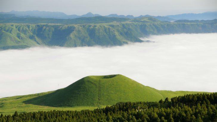 Workday starts major push in Japan
