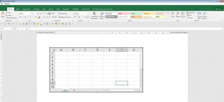 Excel inside Word