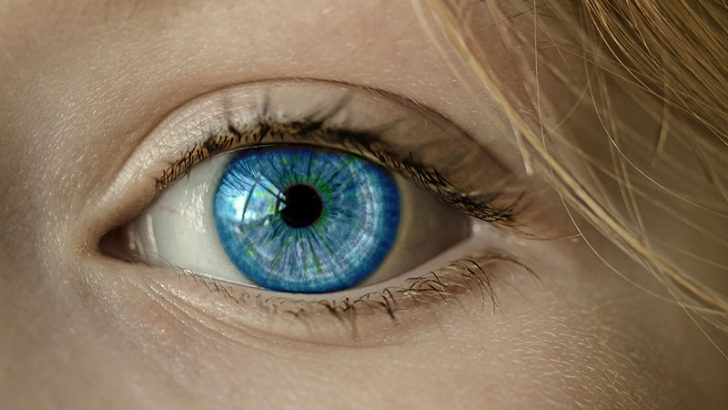 TSB adds iris biometrics to mobile app