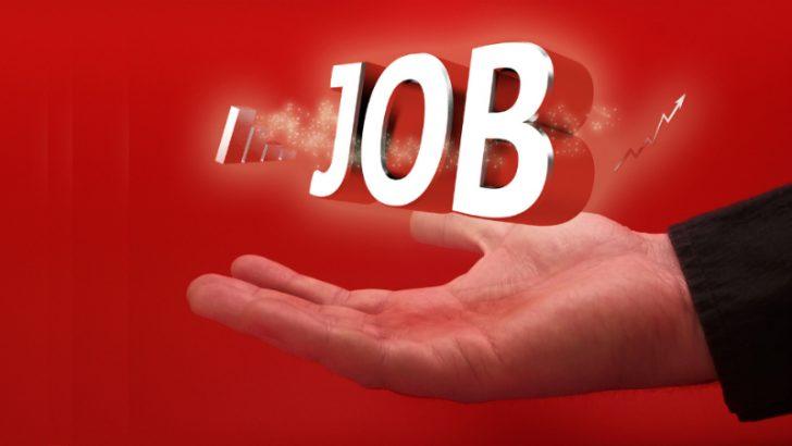 Job concept Image credit Pixabay/Svilen Milev