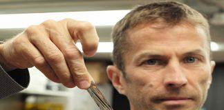 Dr Mark Lantz, IBM, holding one square inch of new tape