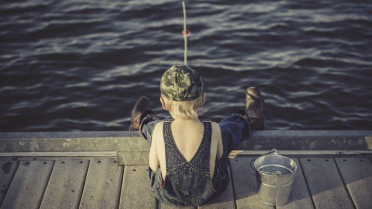 Boy fishing Image credit Pixabay/Langll