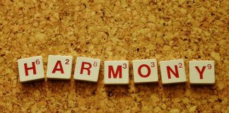 Harmony Image credit Pixabay/Alexas_Fotos