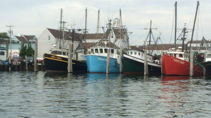 Fishing fleet Image credit Pixabay/enzol