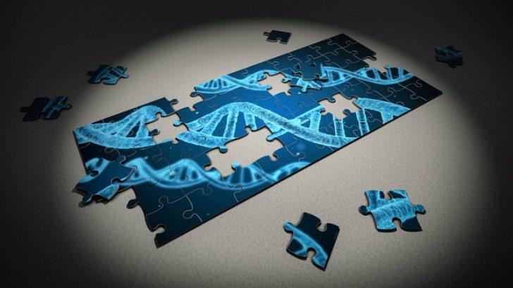 puzzle IMage credit pixabay/qimono