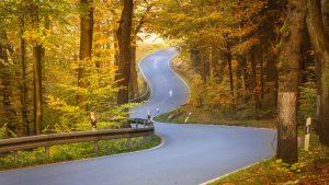 Road autumn curves Image credit PIxabay/Seq68