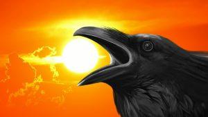Krow PSA Sunset crow Image credit Fxabay/Alexas-Photos