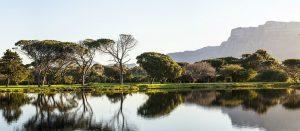 South African panorama