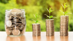 investment growth Image credit Pixabay/nattanan