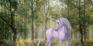 Unicorn Image credit SilviaP_Design