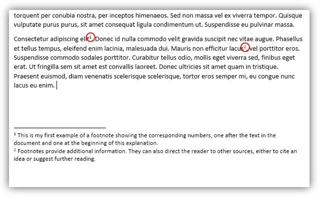 Footnote examples