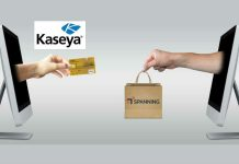 Kaseya Spanning Image credit pixabay/mediamodifier/Kaseya/Spanning