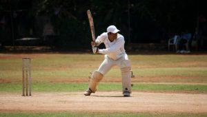 Cricket Image credit pixabay/PDPICS