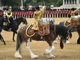 Ceremony British Army Image credit pixabay/Skeeze