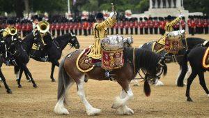 Ceremony British Army Image credit pixabay/Skeeze