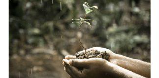 Hands Nature rain Image credit Pixabay Pexels