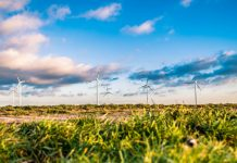 wind farm - image credit pixabay/Free-Photos