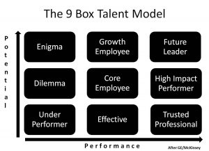 9-Talent performance model (McKInsey)