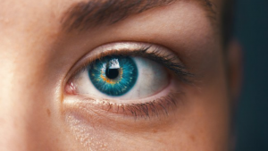 IrisGuard Eye https://www.prnewswire.com/news-releases/clinical-trials-planned-for-iris-recognition-based-patient-identification-software-300788139.html