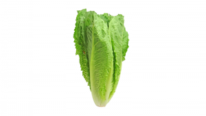 Romaine Lettuce https://pixabay.com/photos/lettuce-romaine-greens-vegetable-2468495/