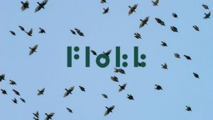 Animals - flock of birds Image credit pixabay/lars_nissen_PhotoArt and Flokk Logo (c) Flokk