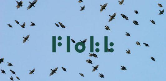 Animals - flock of birds Image credit pixabay/lars_nissen_PhotoArt and Flokk Logo (c) Flokk