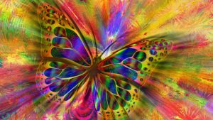 Butterfly Transfromation Image credit PIxabay/Geralt