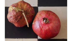 Pomegranate Swsp reverse image credit picabay/NGi
