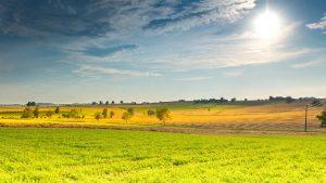 summer landscape: Image credit pixabay/jpeter