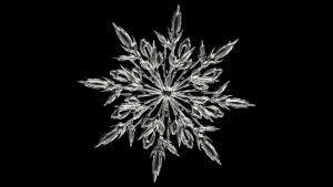 Snowflake Image by Gerd Altmann from Pixabay