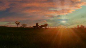 Horse Cloud Coach Image by Albrecht Fietz from Pixabay