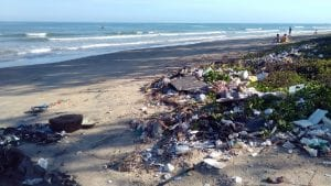Ocean Pollution Sustainability Image by Sergei Tokmakov, Esq. from Pixabay