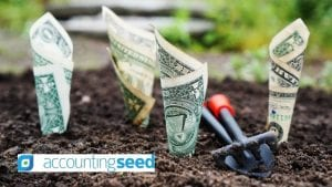 Accounting Seed Funding Image by TheDigitalWay from Pixabay