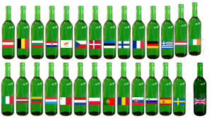 Eu Brexit bottles Image by conolan from Pixabay