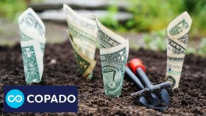 Copado Funding Image by TheDigitalWay from Pixabay
